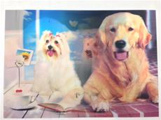 3D Lenticular Picture Dogs Golden Retriever/Poodles