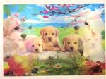 3D Lenticular Picture Dogs/Golden Retriever Puppies