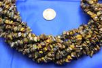 "Tiger's Eye Bead Strand/34"" long/Small Chips"